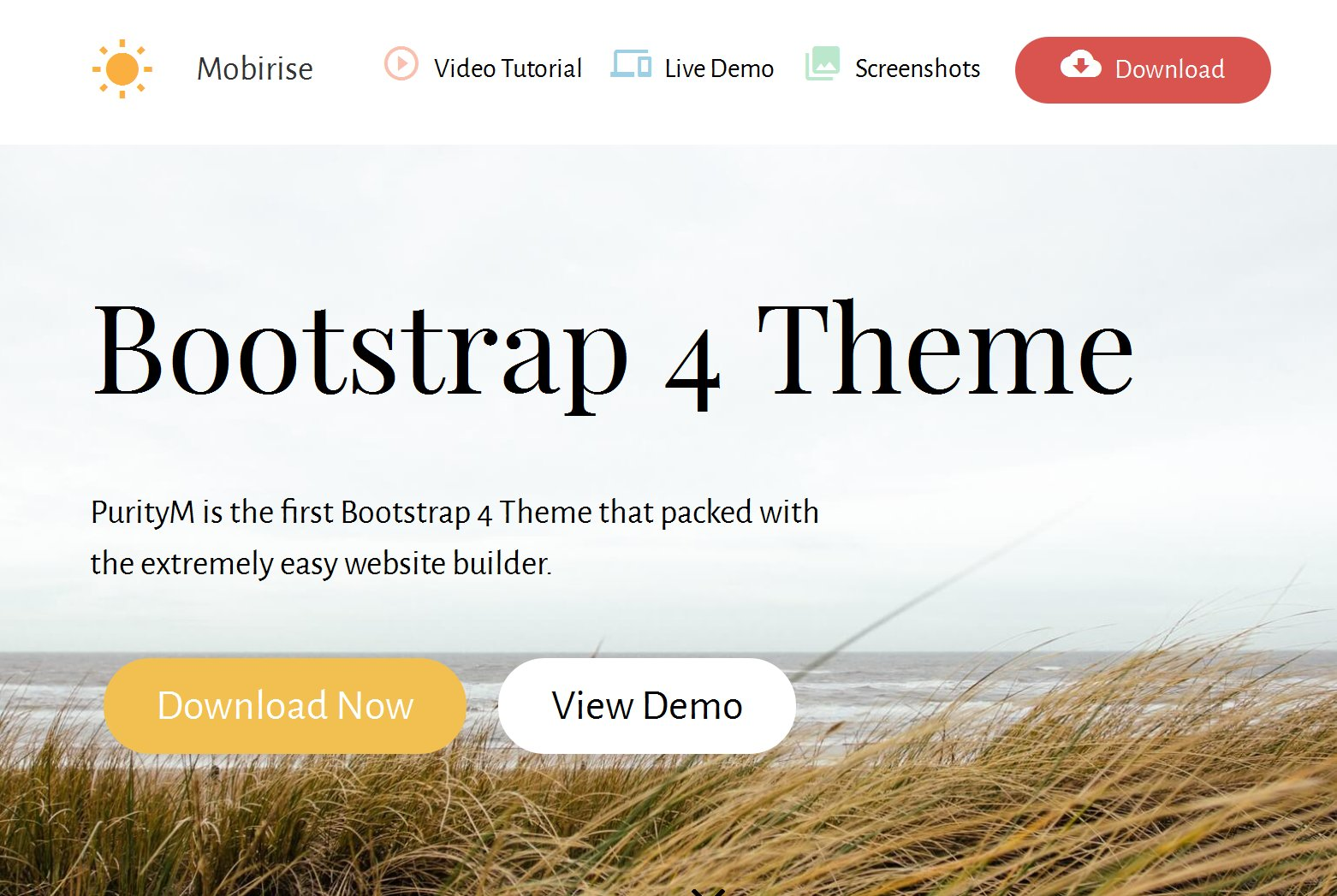 The new, fully responsive and retina-ready Bootstrap 4 theme comes with a big set of pre-made blocks: image slideshow, contact form,  social share buttons, mobile menu, google maps, vector icons, price table, footer, video and parallax background, article, blog, feedback, buttons, lightbox gallery, google fonts, full screen intro and more.