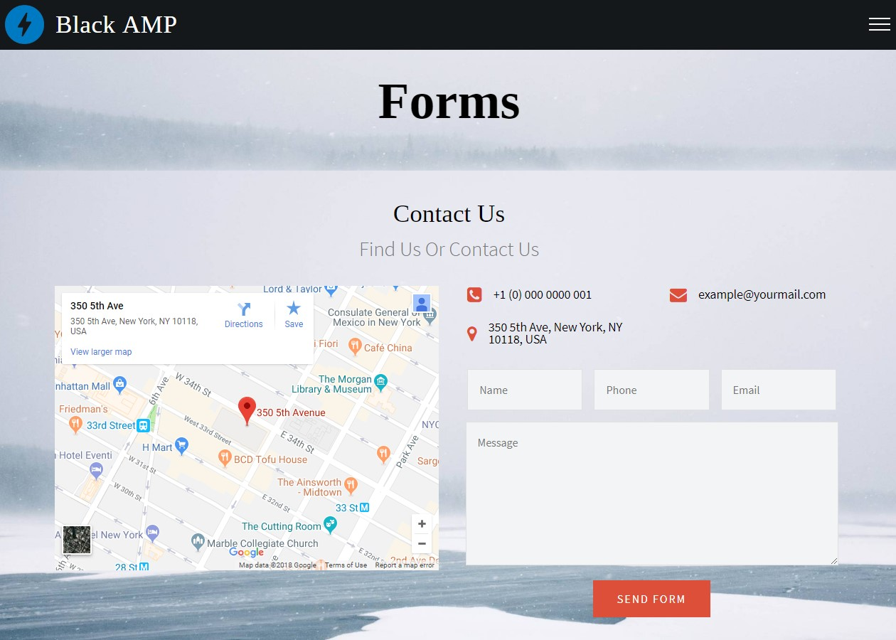 AMP HTML Forms Template