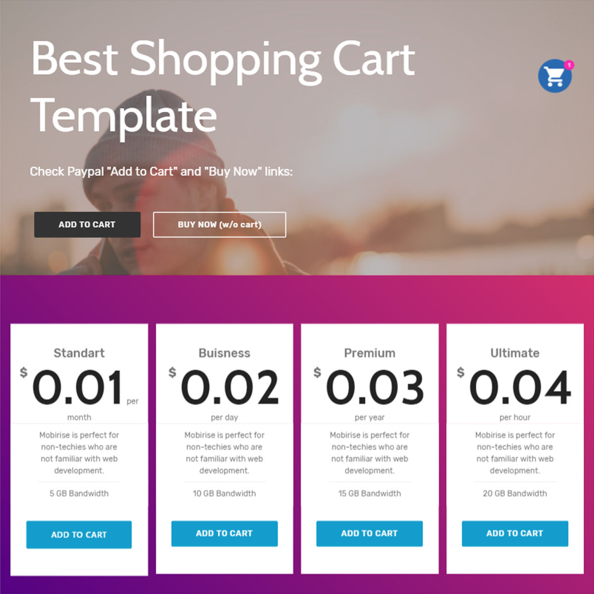 HTML5 Bootstrap  Shopping Cart  Templates