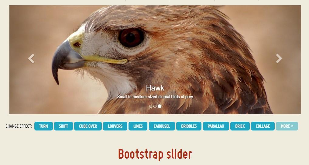 Carousel Slider In Bootstrap