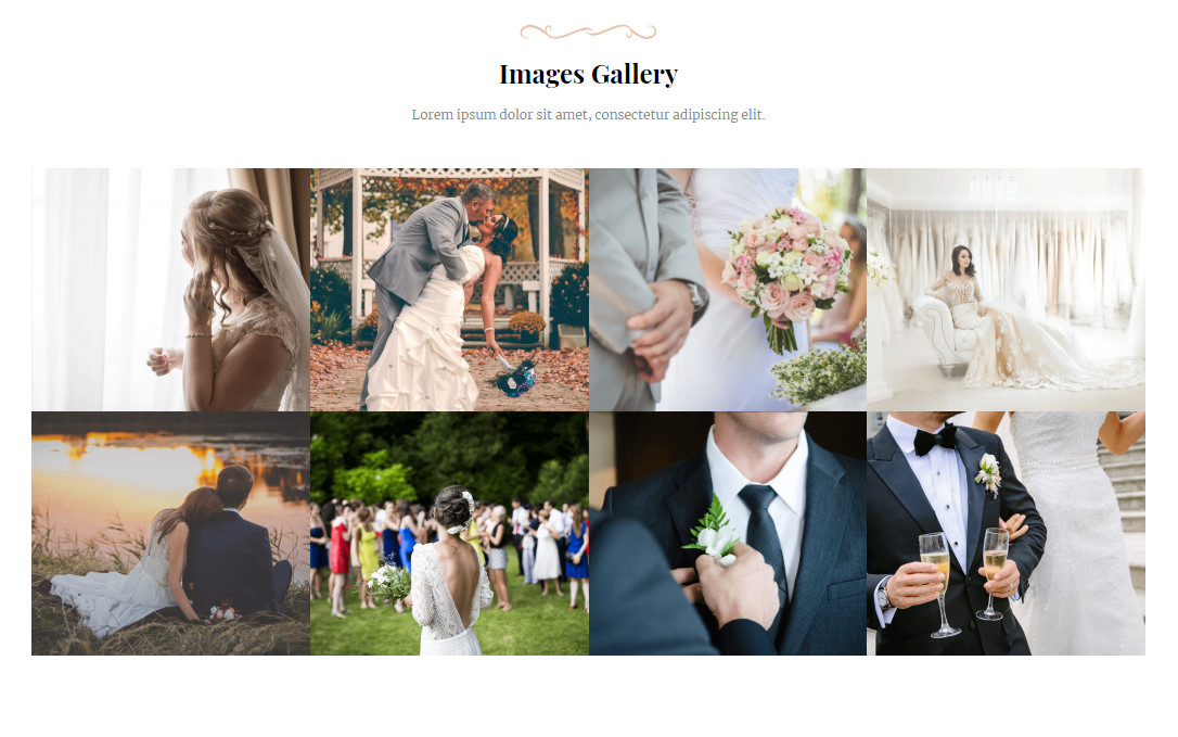 Wedding AMP Responsive Gallery